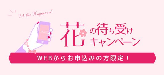 花の待ち受けCP_blog