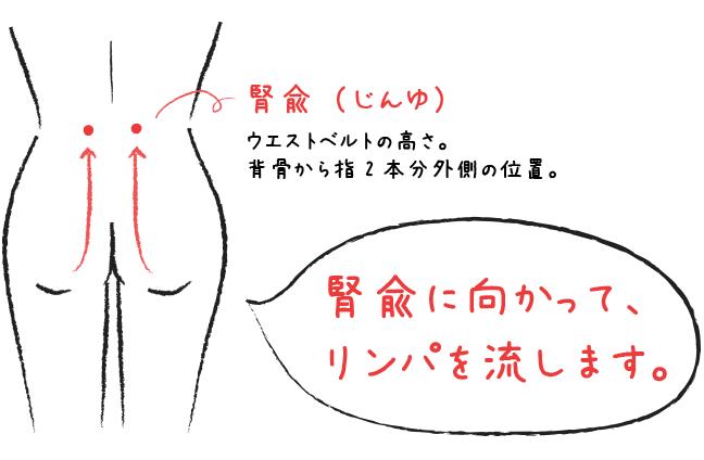 腎兪_リンパ